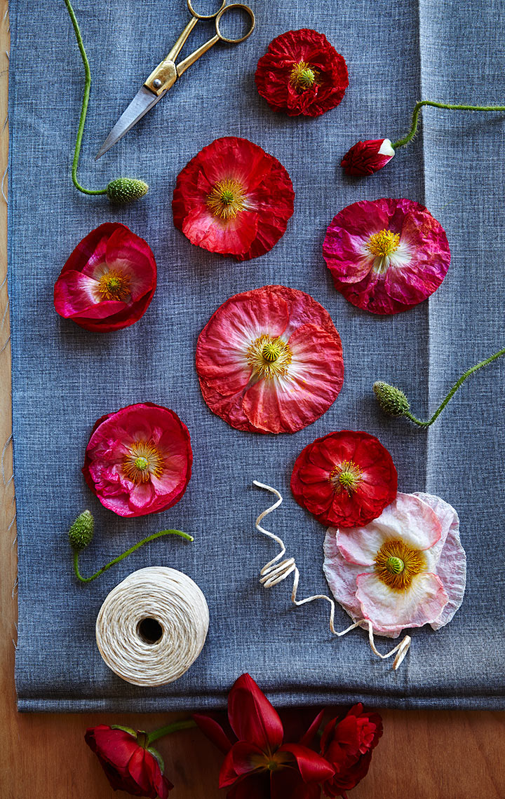 Shannon-poppies-and-grey-fabric